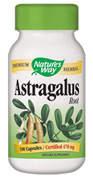 Astragalus Root - Click Image to Close